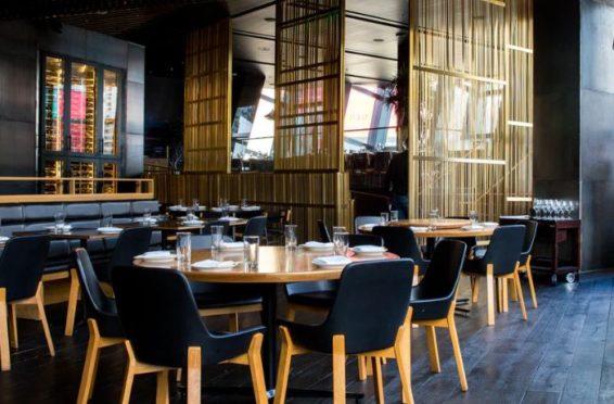 Restaurant Senkung Umsatzsteuer